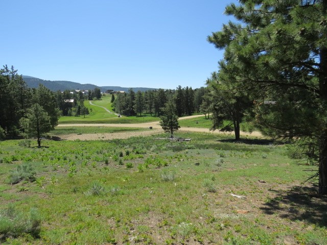 Lot 1253 Colonial Trail, Angel Fire, NM 87710