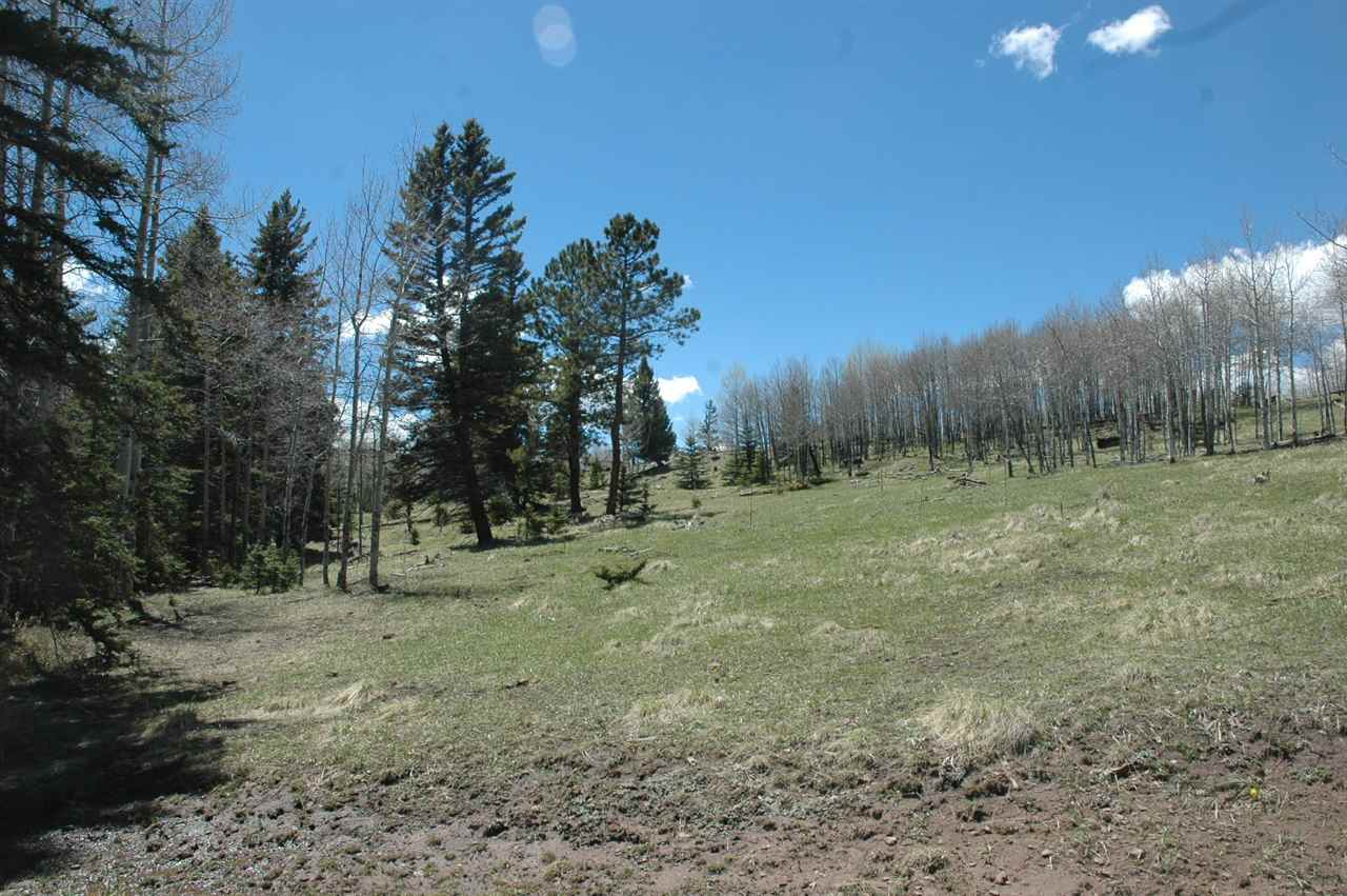 Lot 189 Meadow Glen, Angel Fire, NM 87710