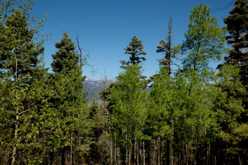 Lot 435 El Camino Real, Angel Fire, NM 87710