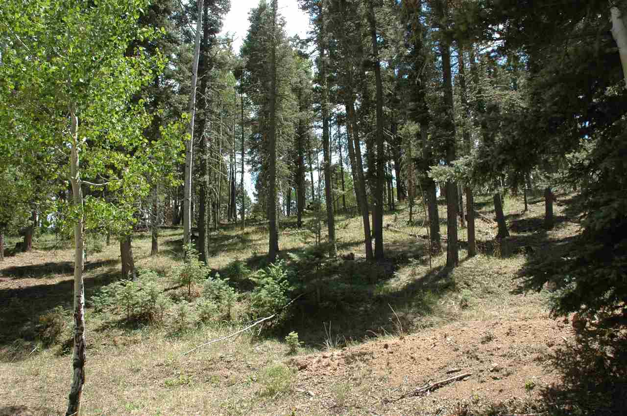 Lot 93 San Juan Dr, Angel Fire, NM 87710