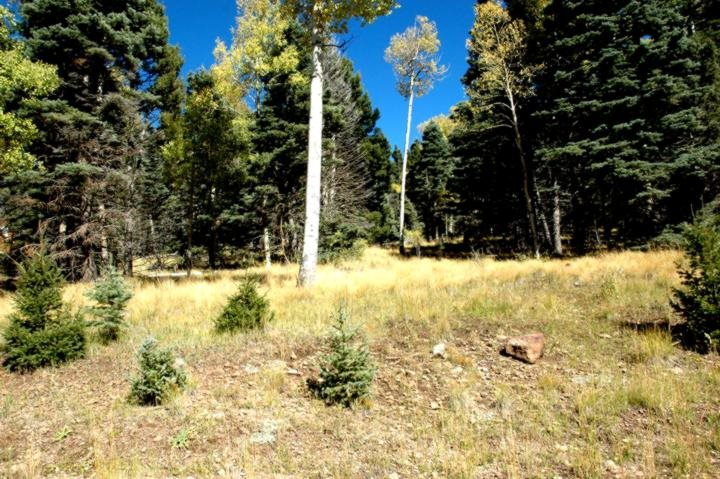 Lot 1476 Panorama Way, Angel Fire, NM 87710