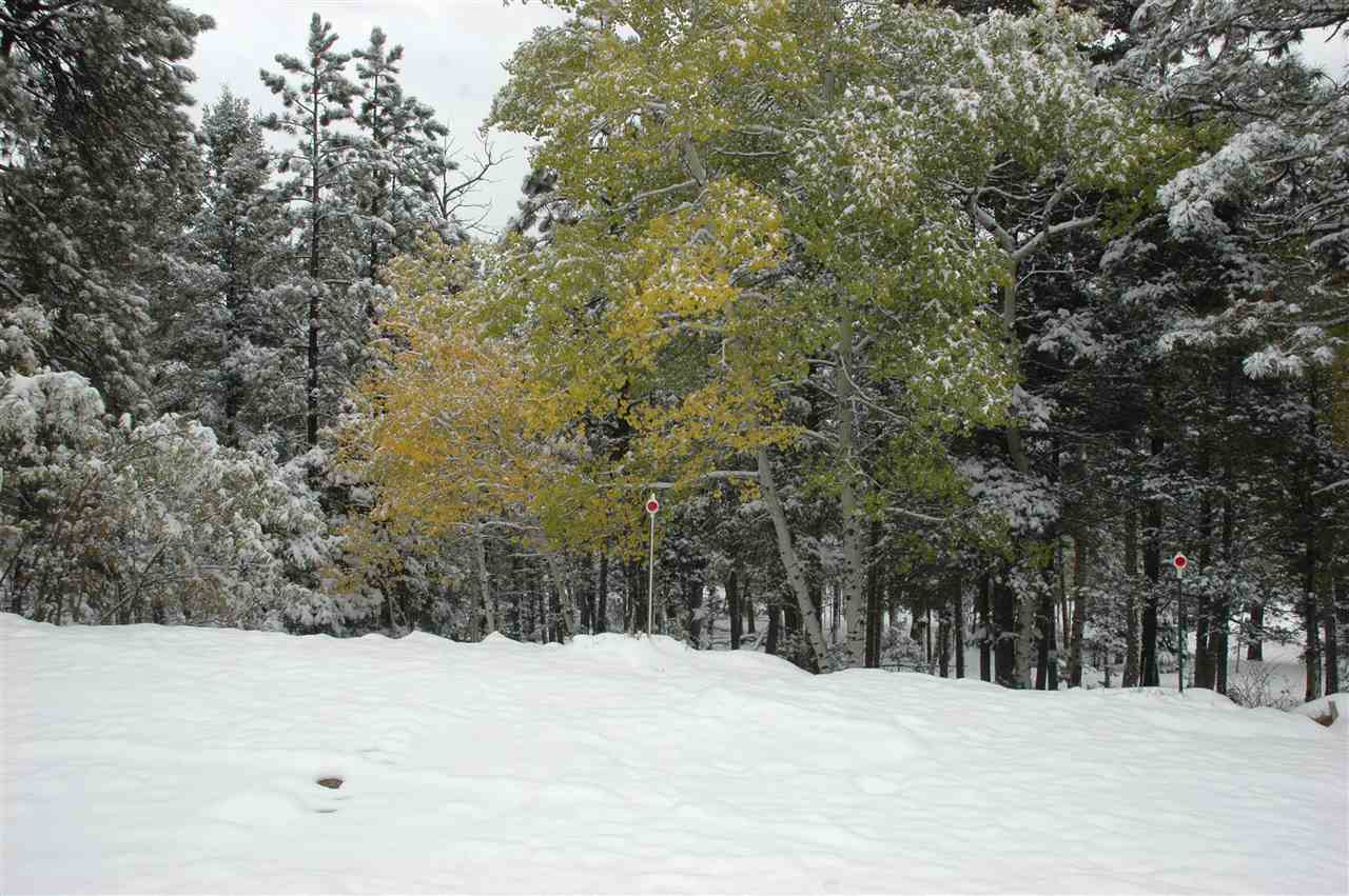 lot 850 san mateo circle, angel fire, NM 87710