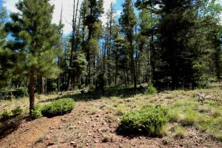 Lot 478 Vail Loop, Angel Fire, NM 87710