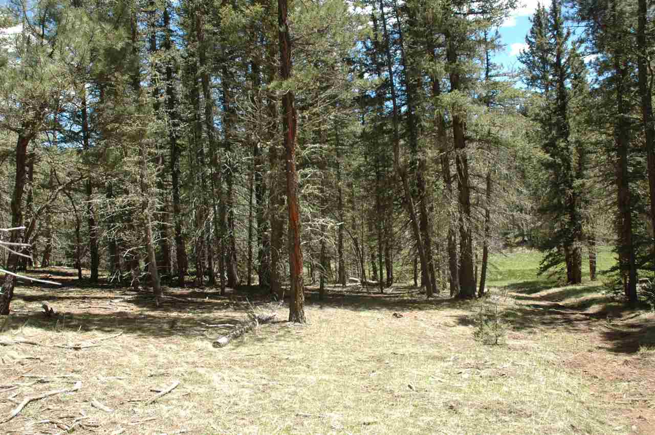 65 navajo circle, Angel Fire, NM 87710