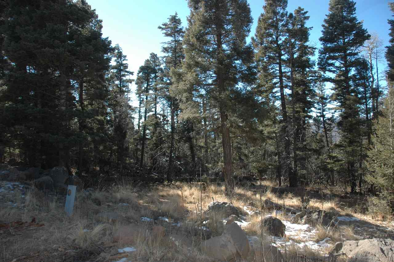 Lot 1447 Cheerful Way, Angel Fire, NM 87710