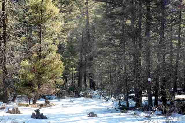 Lot 276 Vail Loop, Angel Fire, NM 87710