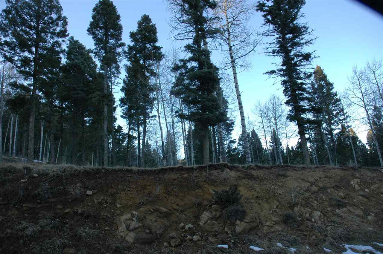 Lot1277 Via del Rey, Angel Fire, NM 87710