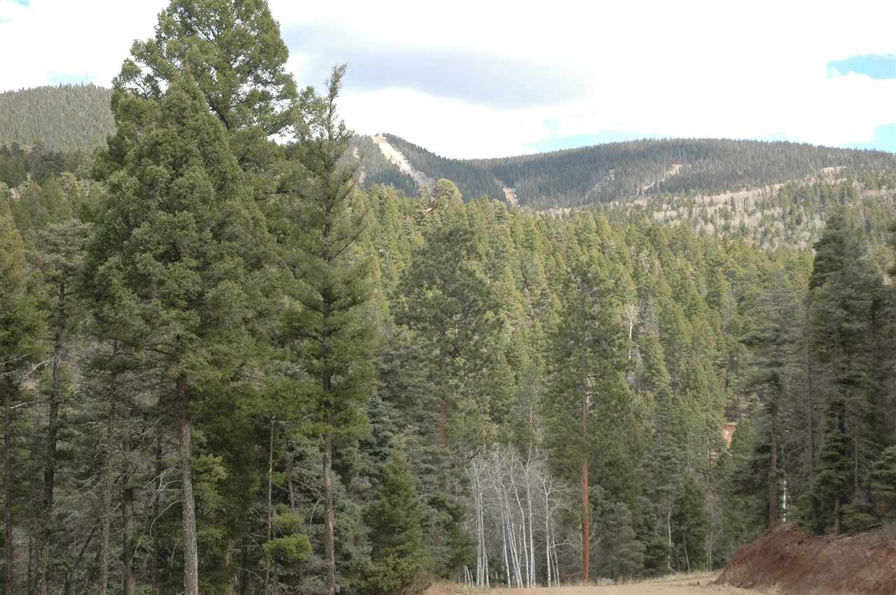 Lot 225 Steamboat, Angel Fire, NM 87710