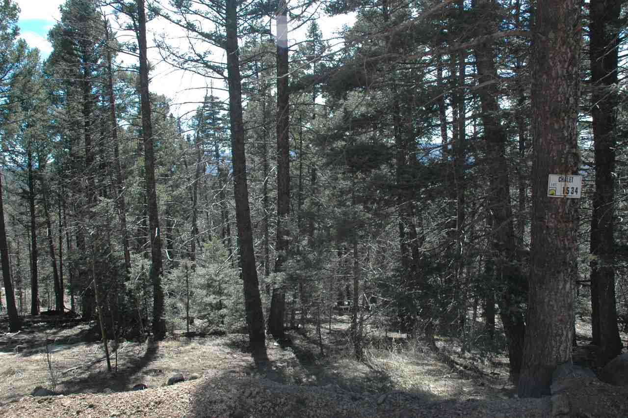 Lot 1534 El Camino Real, Angel Fire, NM 87710