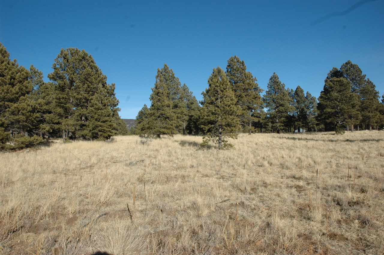 Lot 11 Camino de Ruth, Angel Fire, NM 87710