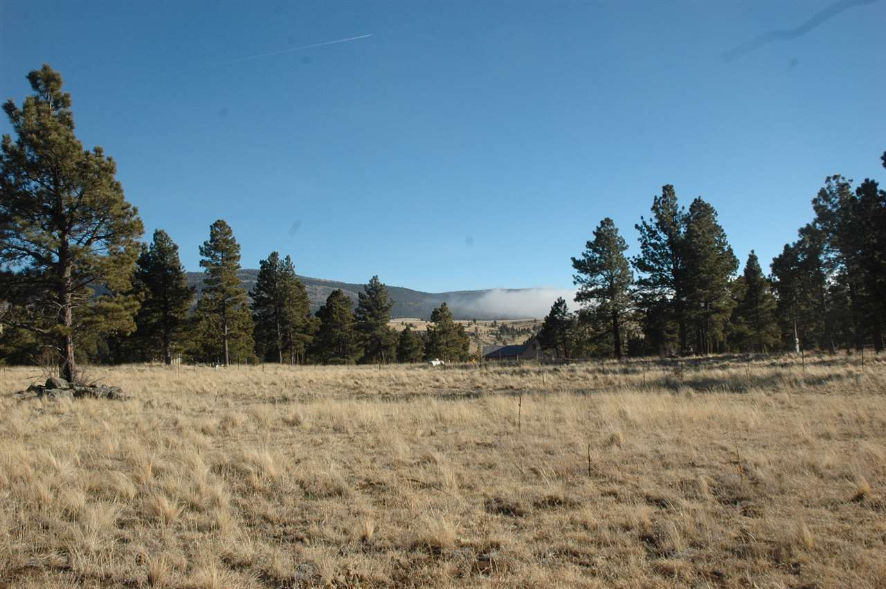 Lot 12 Camino de Ruth, Angel Fire, NM 87710