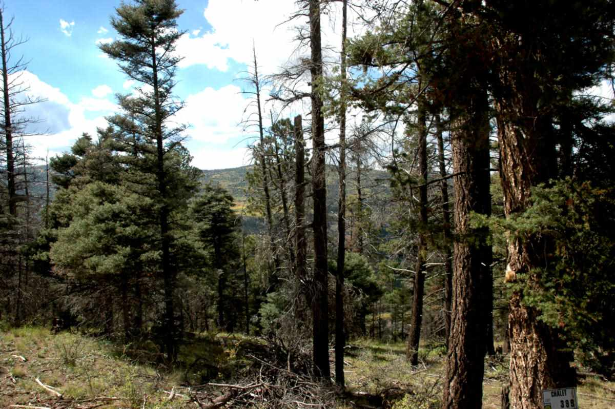 Lot 399 Vail Loop, Angel Fire, NM 87710
