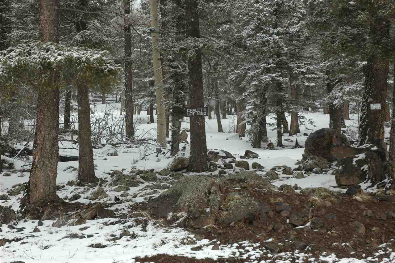 1480a Panorama way, Angel fire, NM 87710