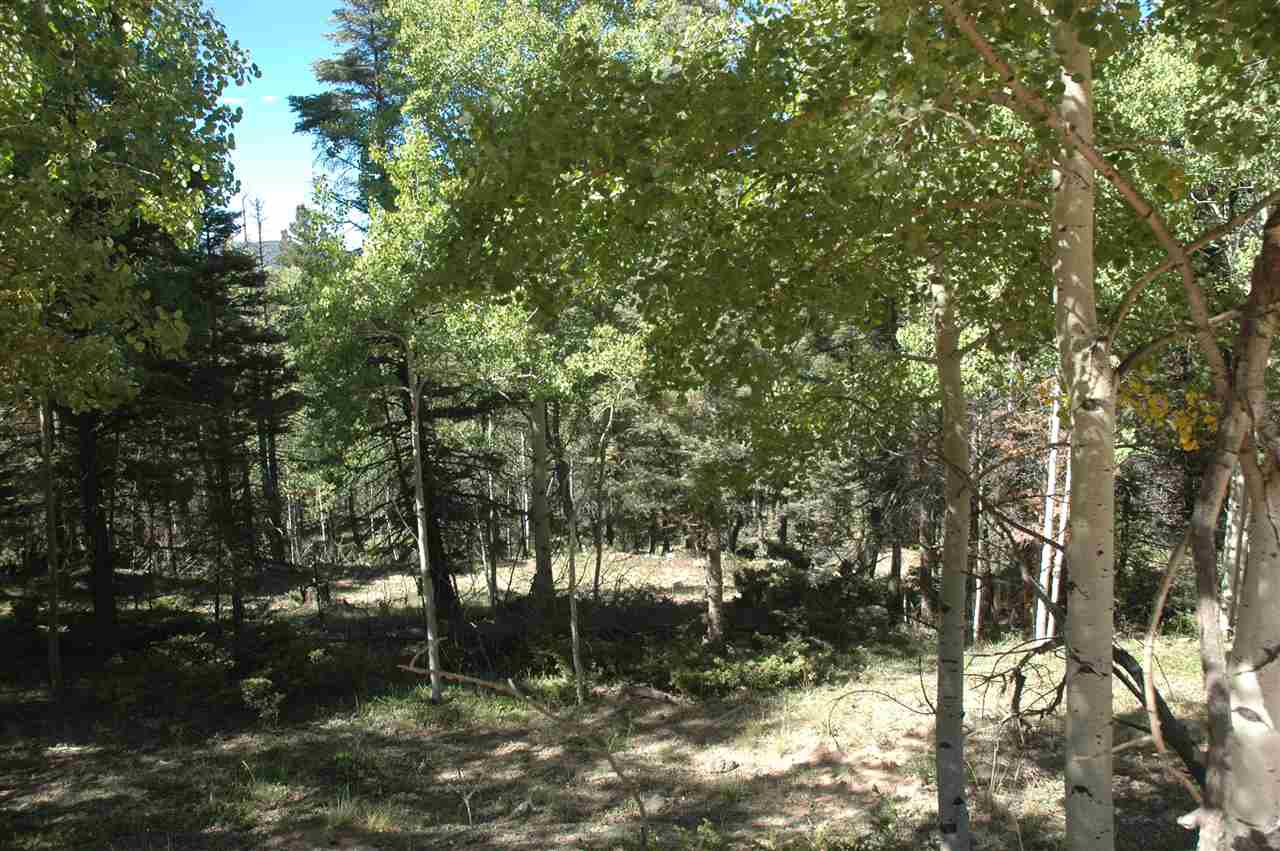 1204 Cheerful Way, angel fire, NM 87710