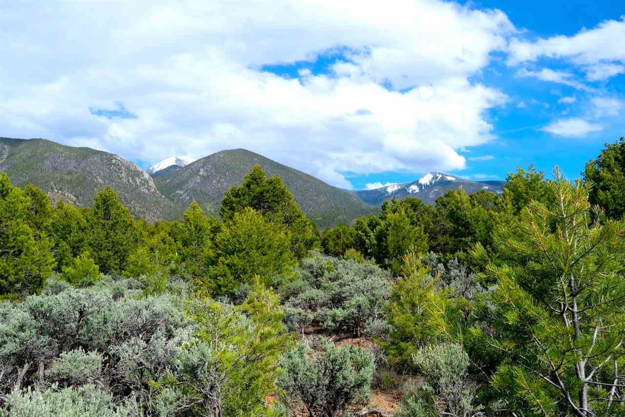 53 99 Jedediah Road, El Rito, NM 87556