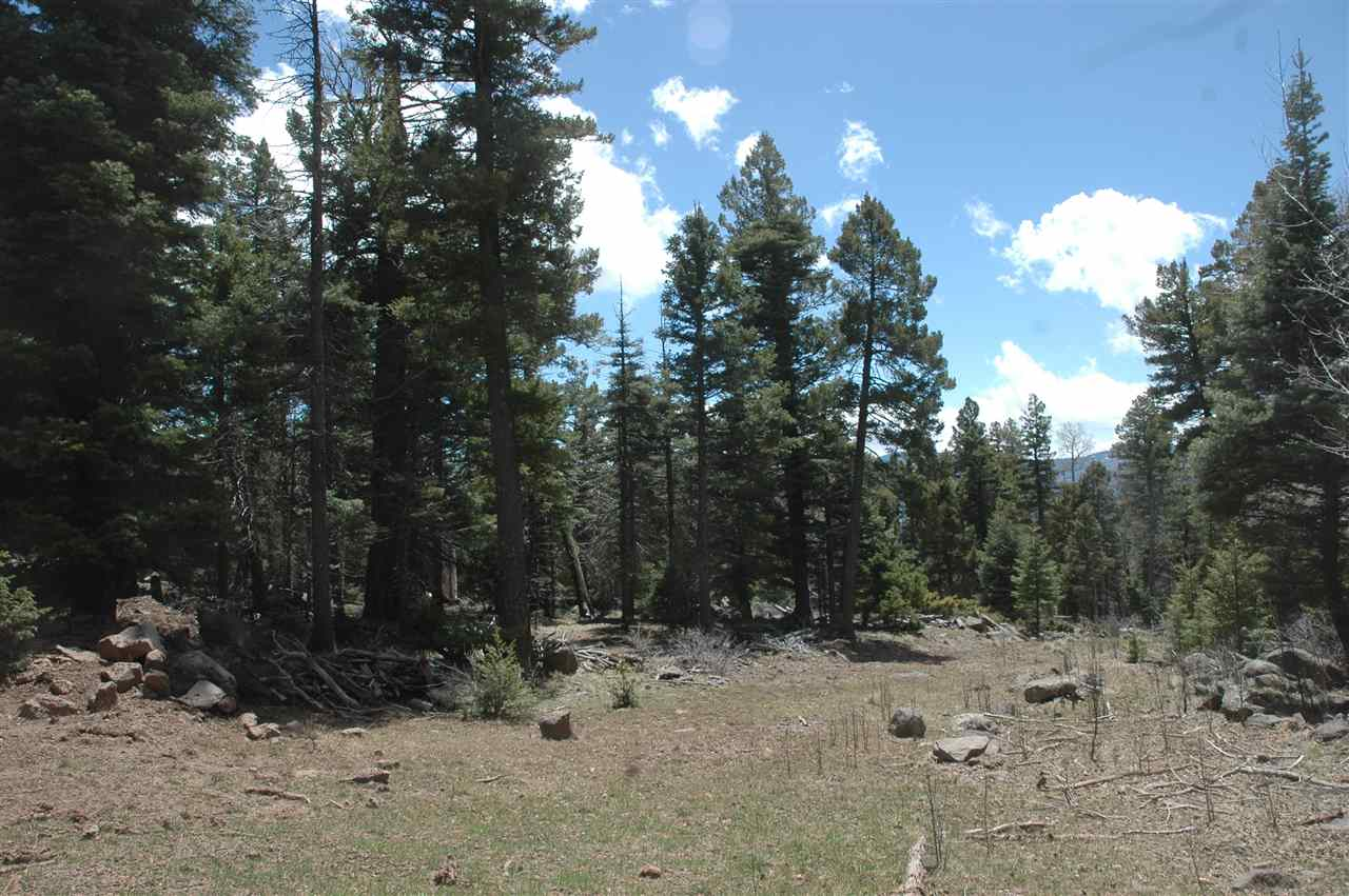 1364 5 skyview overlook, angel fire, NM 87710