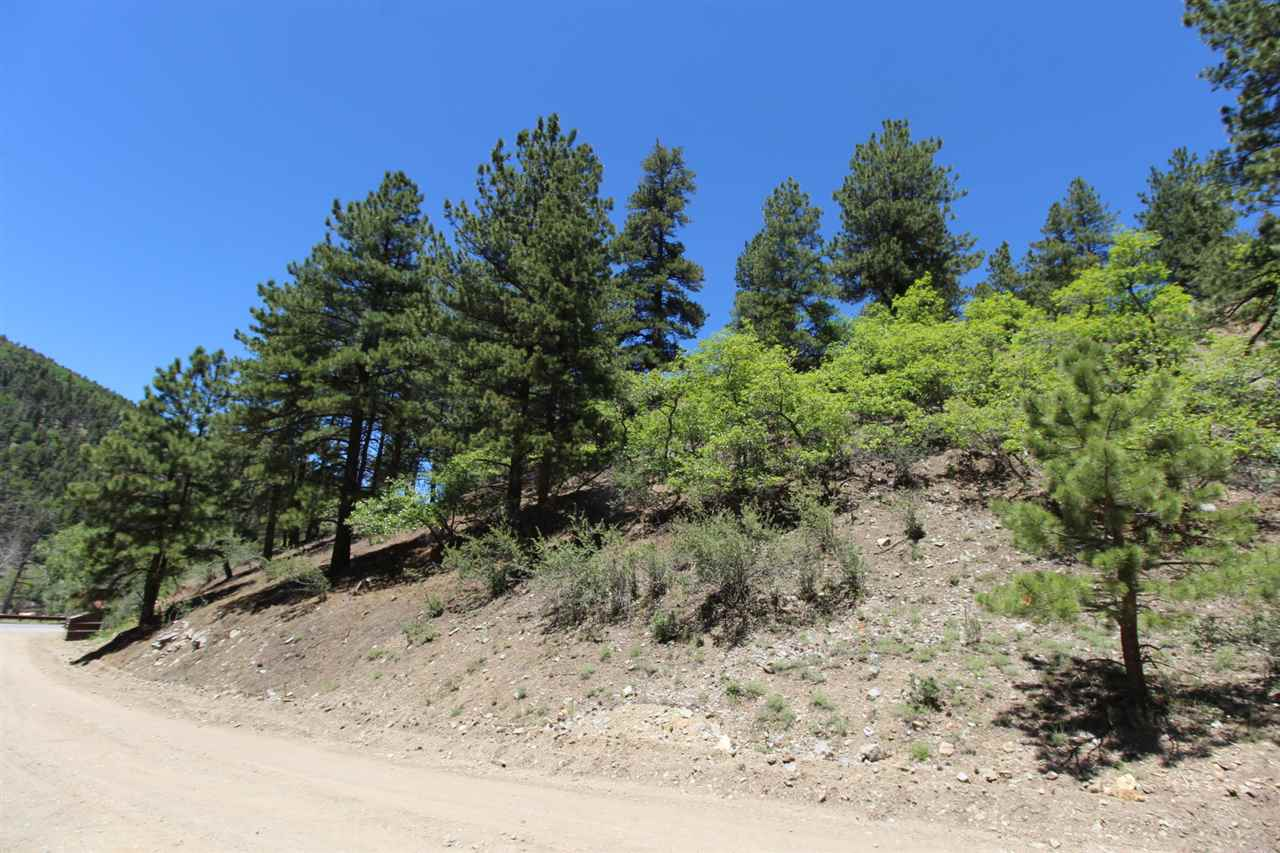 Lot 10 Wild Oak Village, Red River, NM 87558