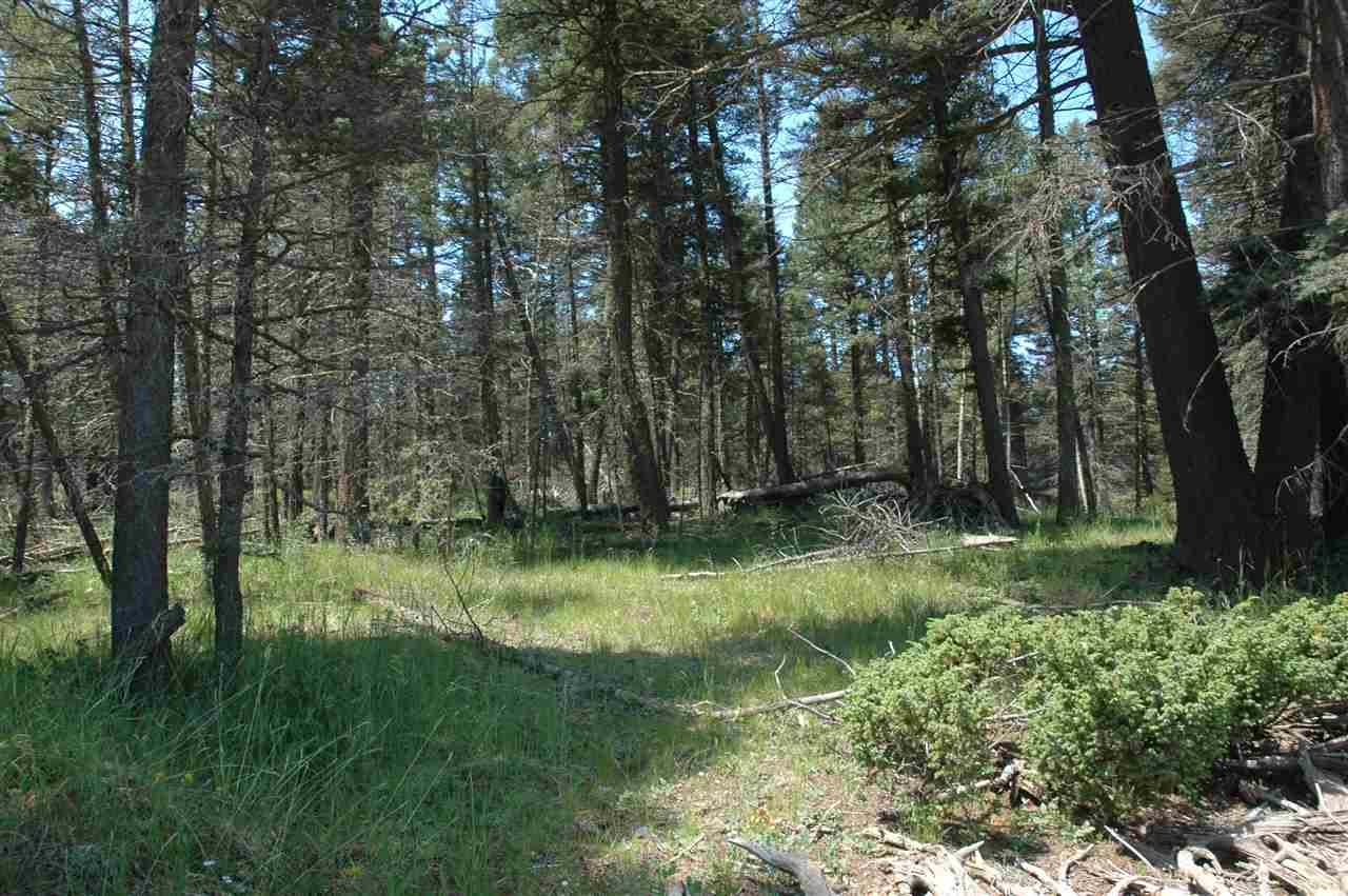 269 back basin rd, angel fire, NM 87710