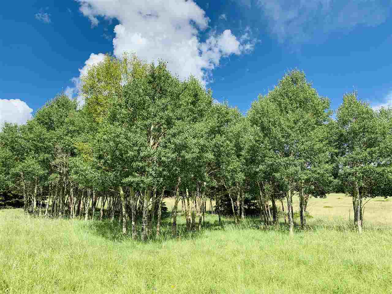 vacant and raw land for sale in angel fire new mexico