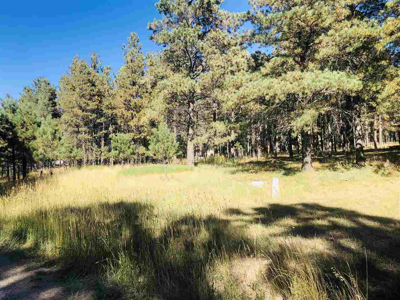 Lot 8 Pine Valley Drive, Angel Fire, NM 87710