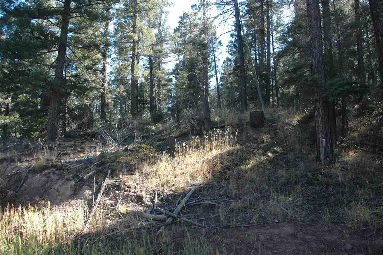 238 summit place, angel fire, NM 87110