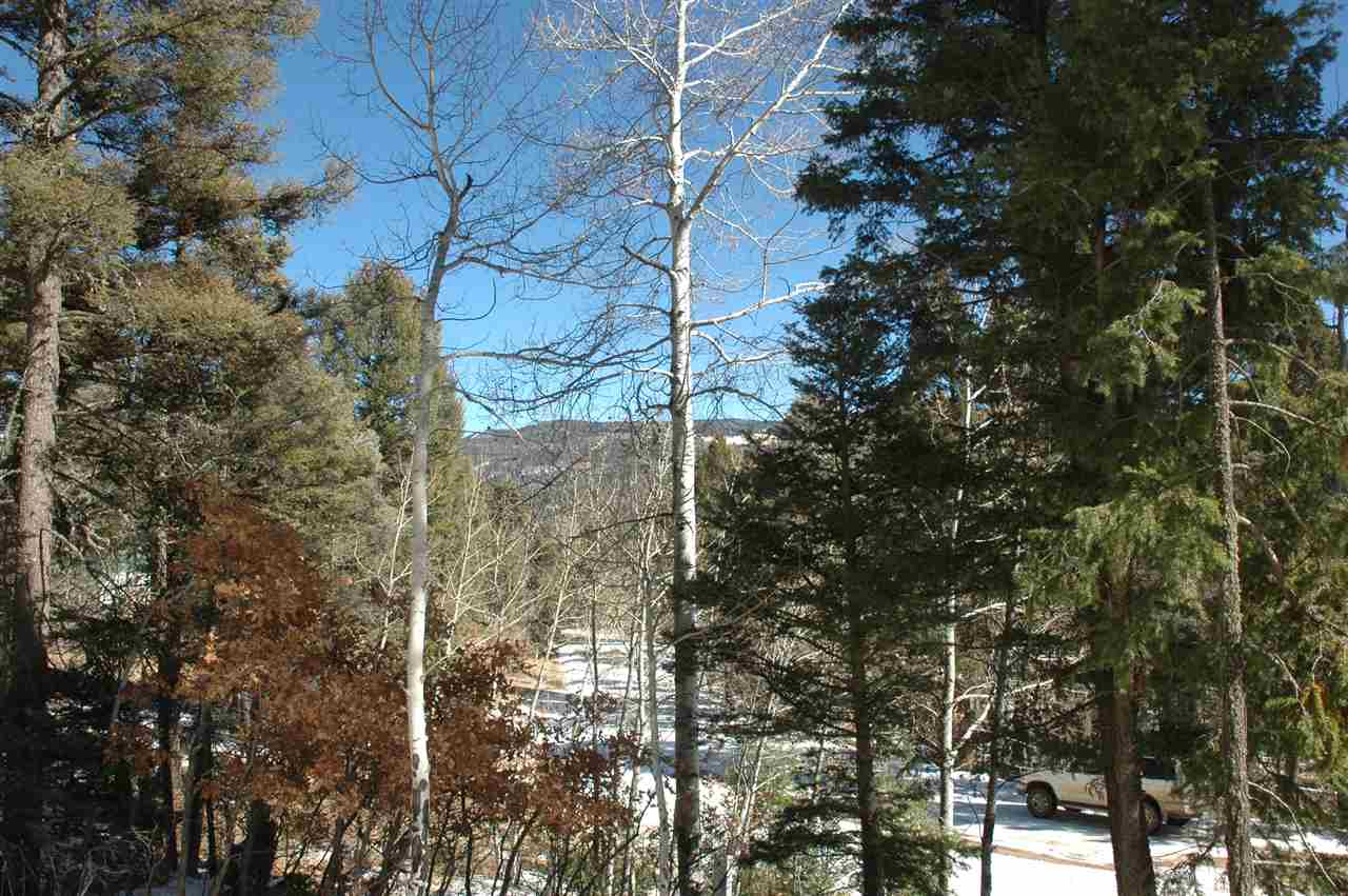 101 calle de los indios, angel fire, NM 87710