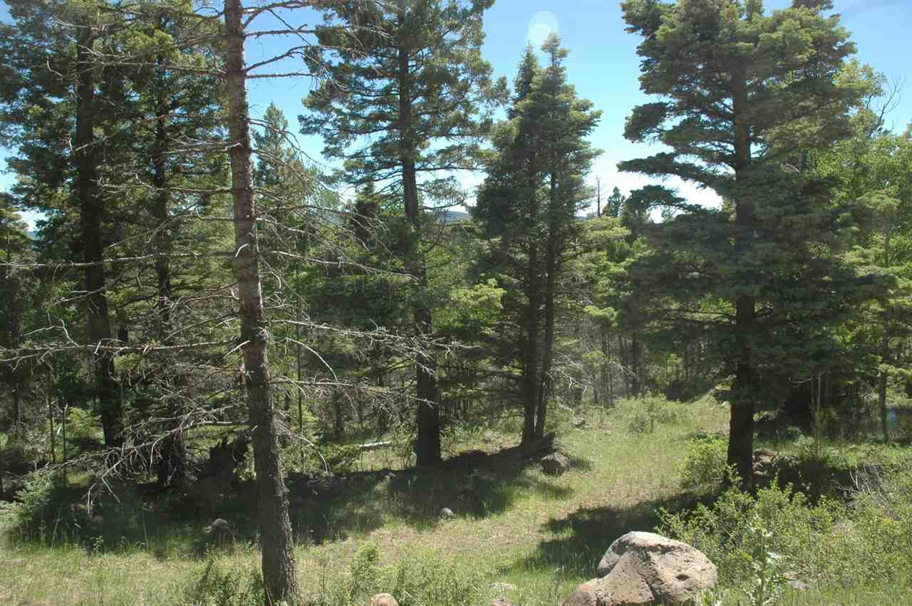1154 Panorama way, angel fire, NM 87710