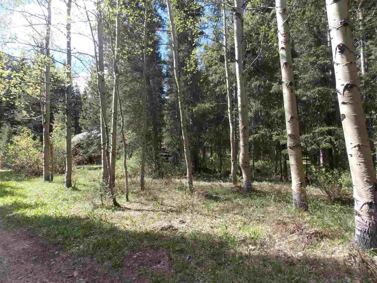 TBD Valley Road, Red River, NM 87558