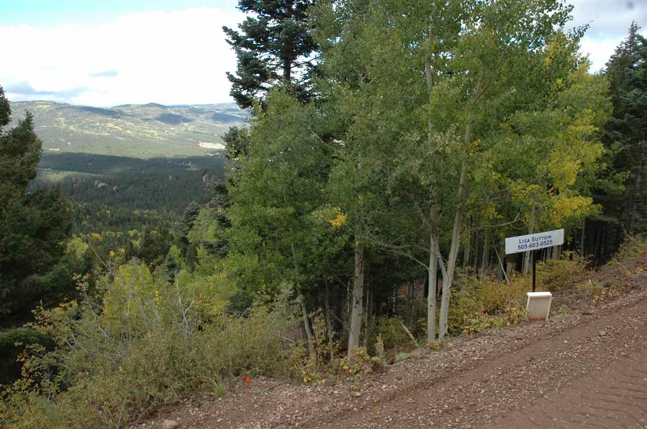 602 panorama way, angel fire, NM 87710