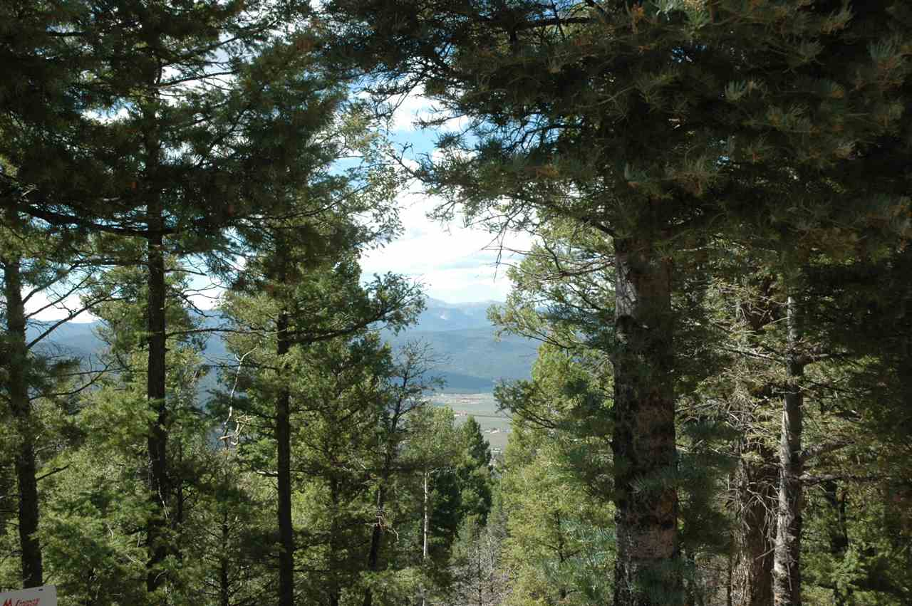 317 south vail overrlook, angel fire, NM 87710