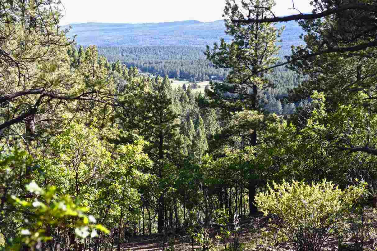 Lot 173 A Vail Overlook, Angel Fire, NM 87710