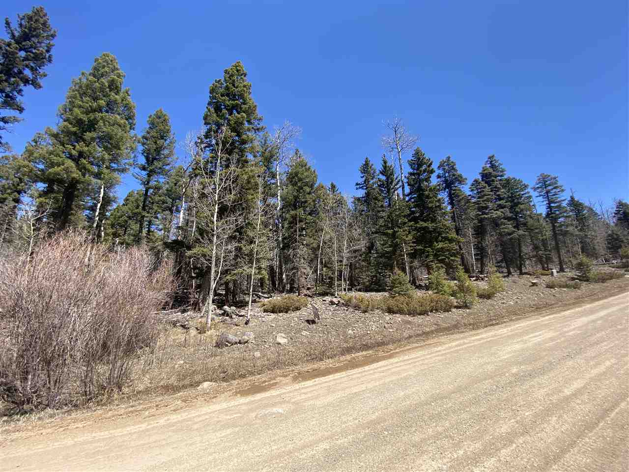 Lot 1113 El Camino Real, Angel Fire, NM 87710