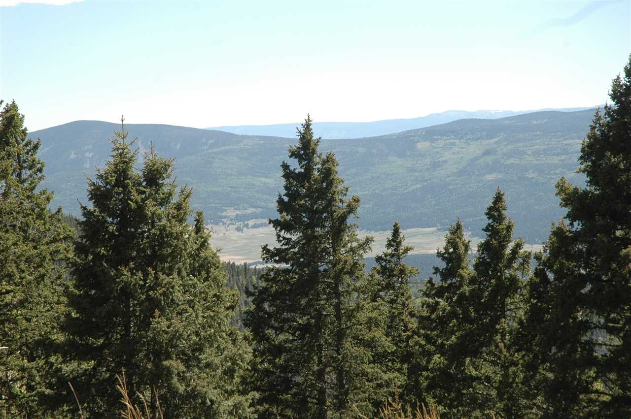7 el camino real, angel fire, NM 87710