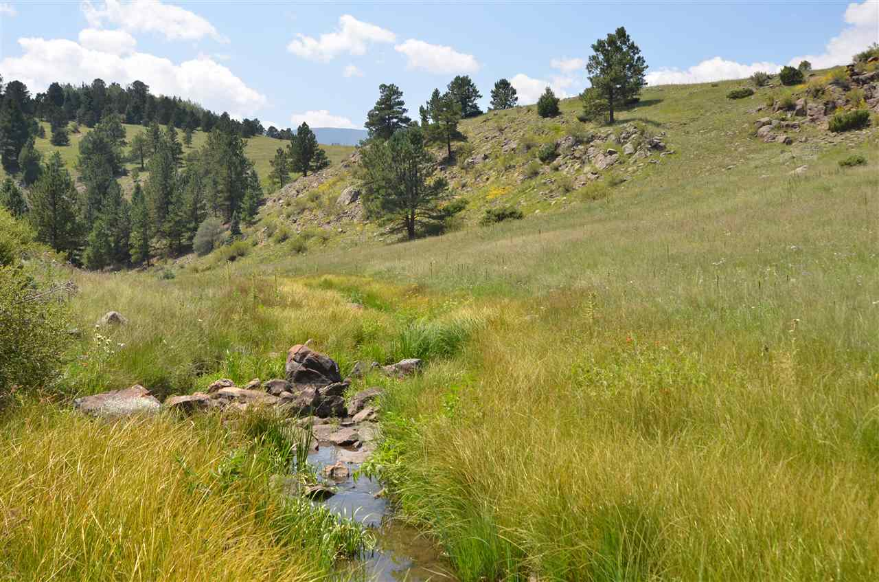 Black Lake Resorts Road 1, Angel Fire, NM 87710