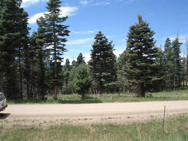 1454 Cheerful Way, Angel Fire, NM 87710