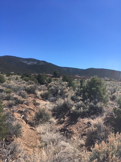 off Calle del Oso, Taos, NM 87571