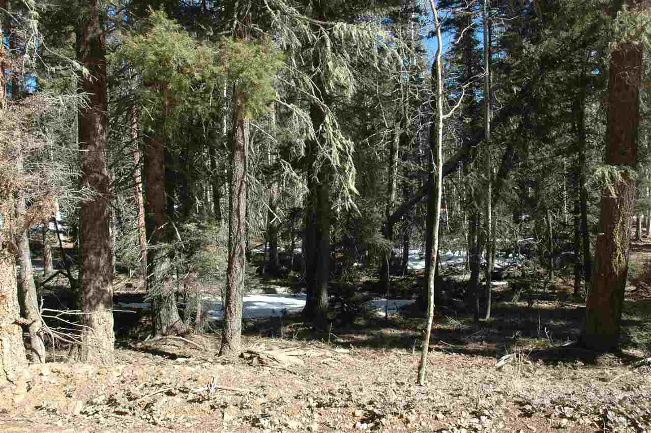 444 rio grande tterrace, angel fire, NM 87710