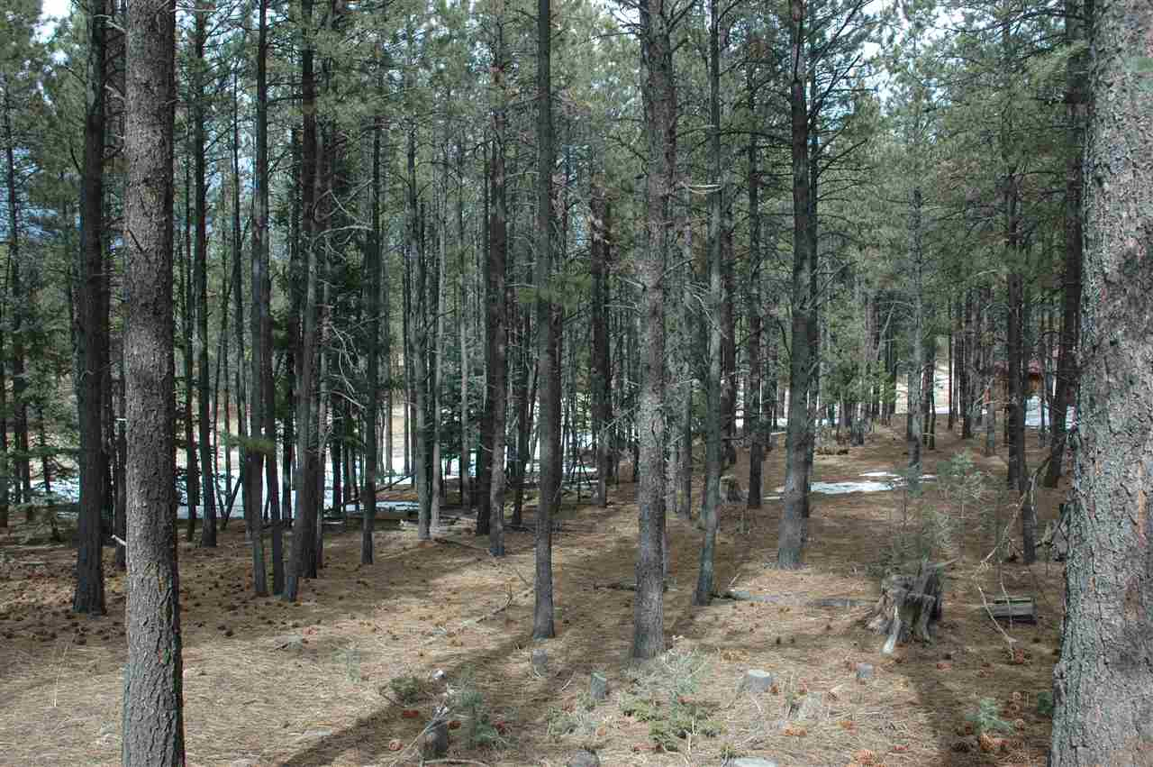 610 via del rey, angel fire, NM 87710