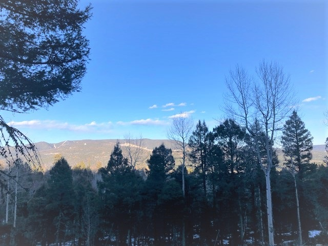 Lot 101 Zia Rd, Angel Fire, NM 87710