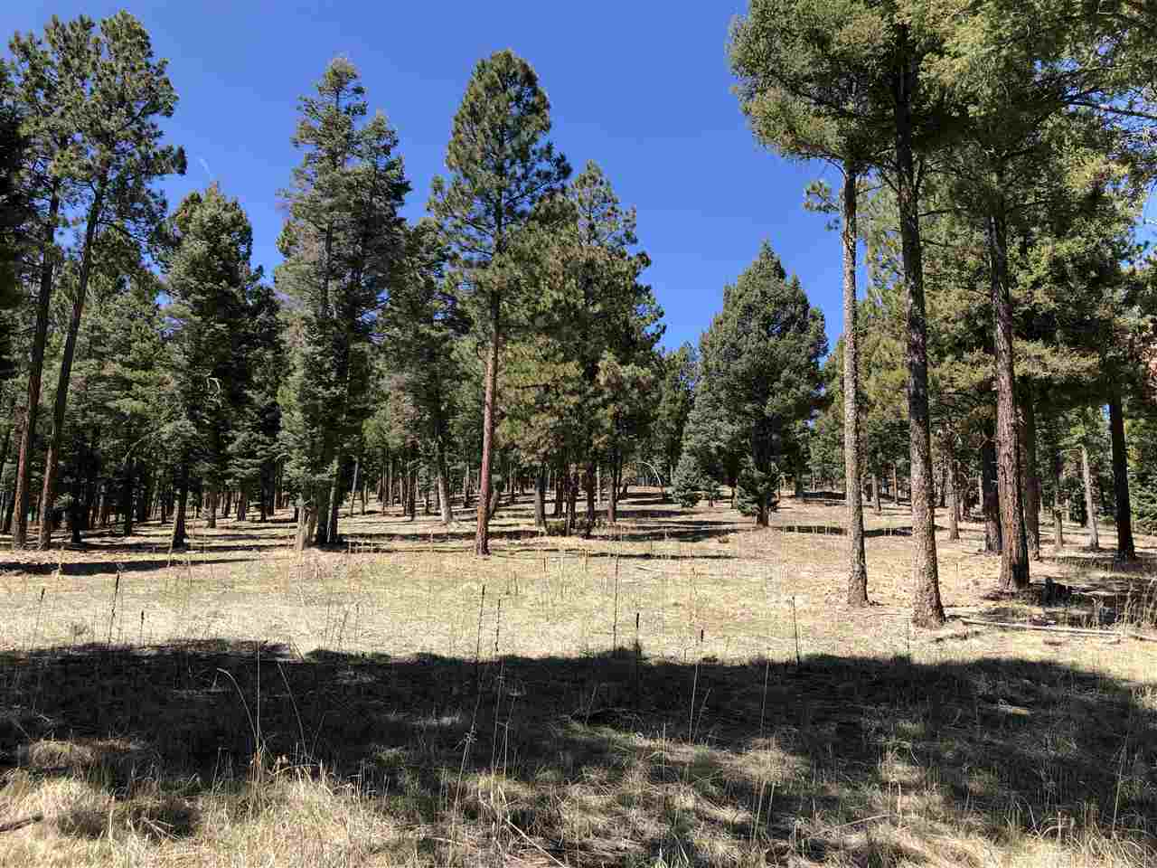 Lot 76A B Amend Pam Coleman Drive, Angel Fire, NM 87710
