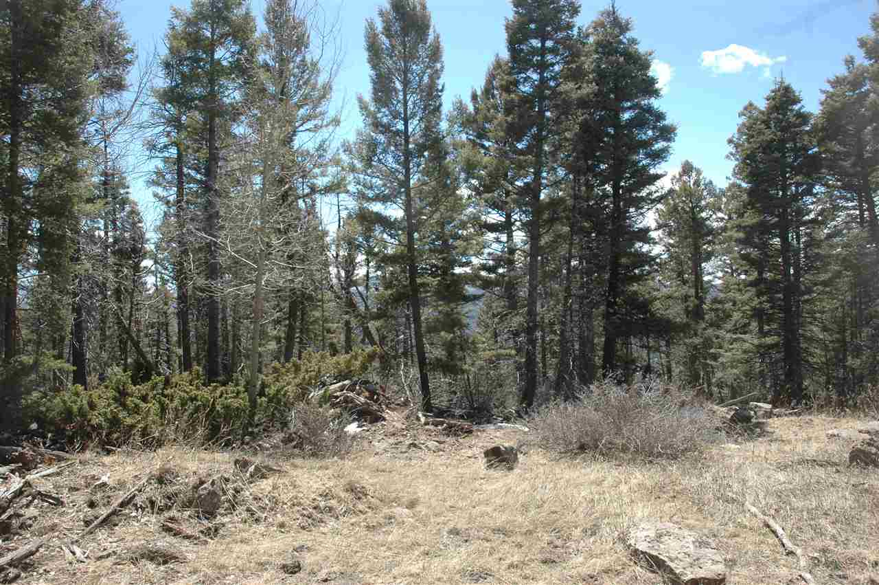1177 cheerful overlook, Angel Fire, NM 87710
