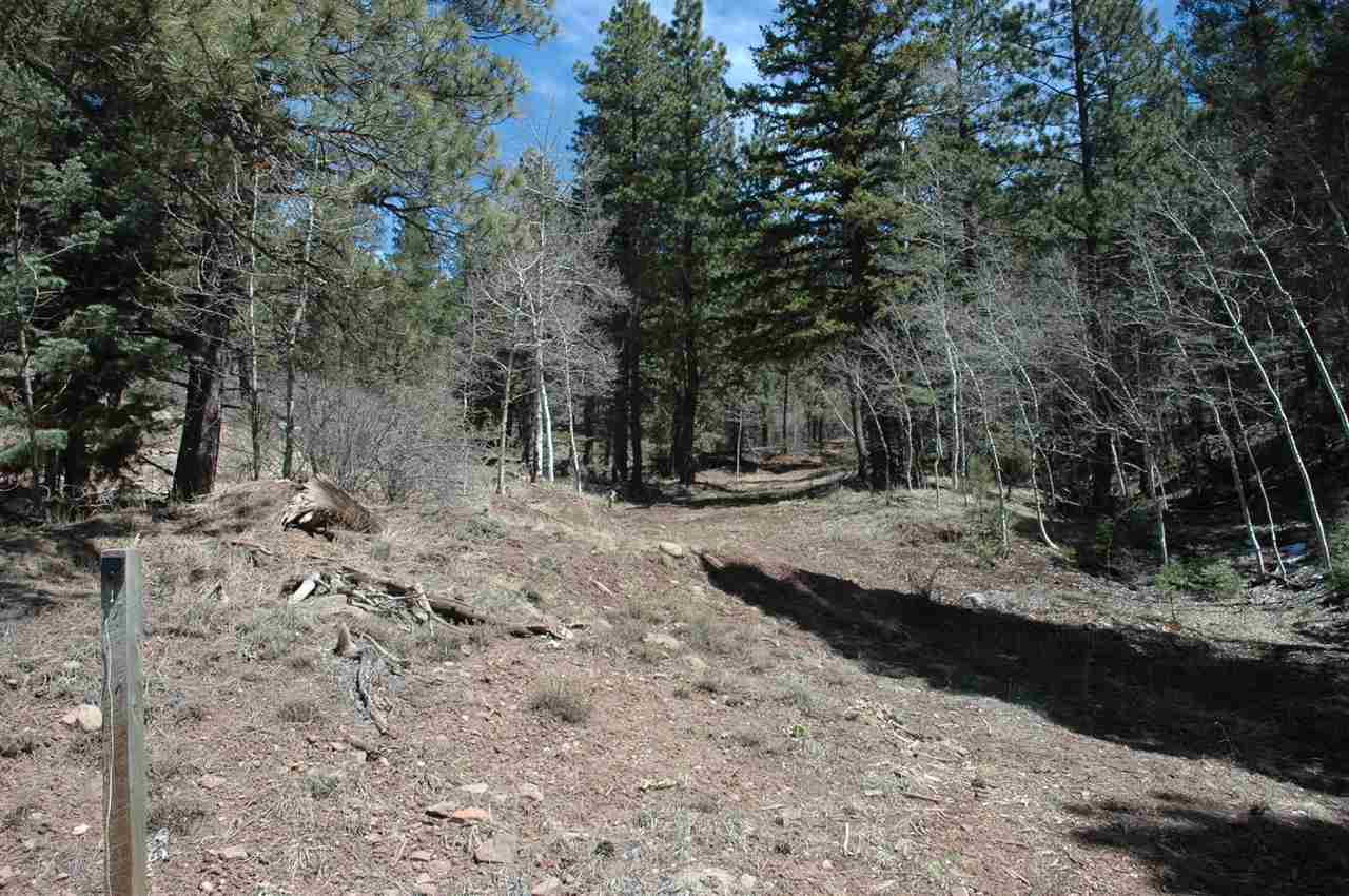 95 back basin rd, angel fire, NM 87710