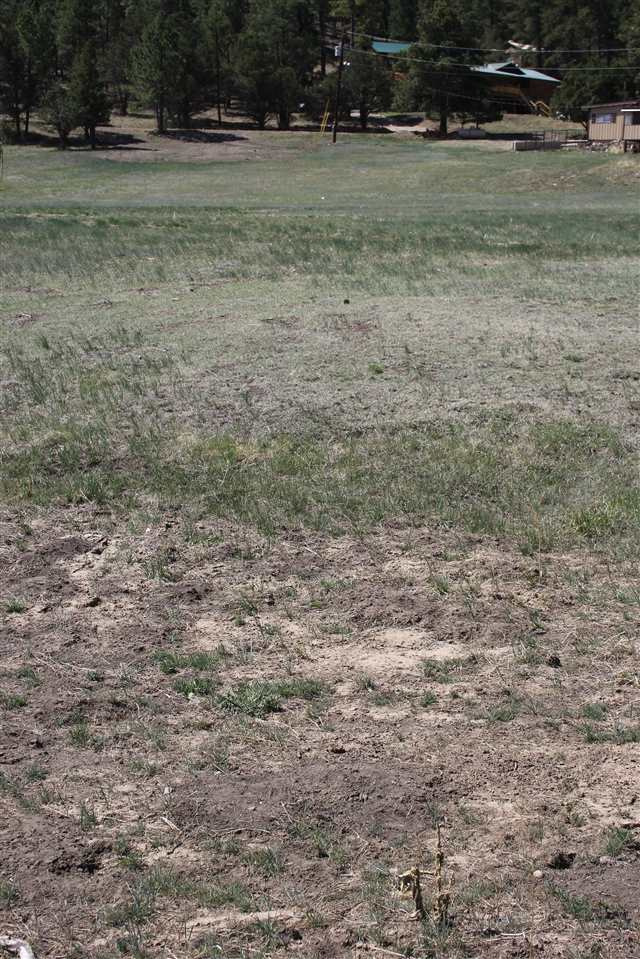 lot 135 Hummingbird Lane, Ute Park, NM 87749