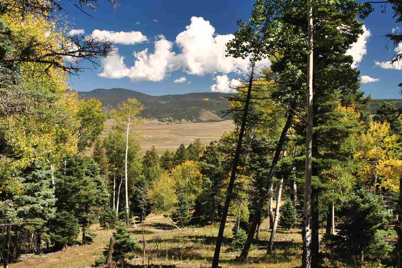 Lot 32 Taos Pines Ranch Road, Angel Fire, NM 87710