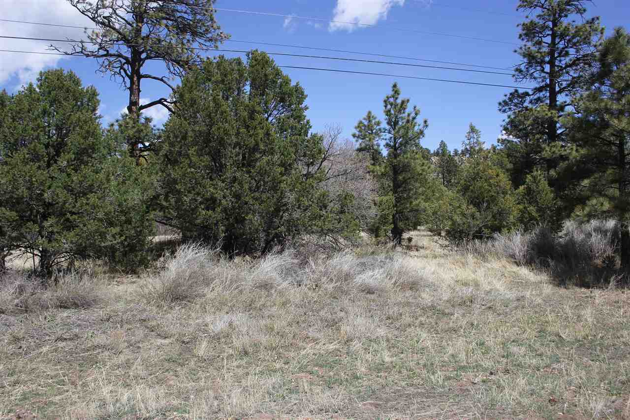Lot 2 Hwy 64, Ute Park, NM 87749