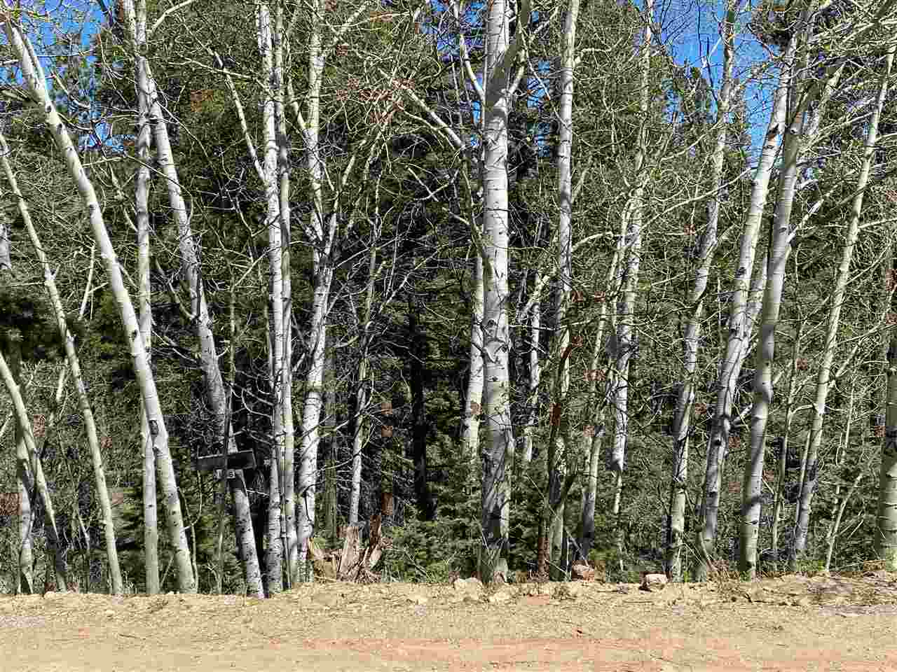 204 Taos Drive, Angel Fire, NM 87710