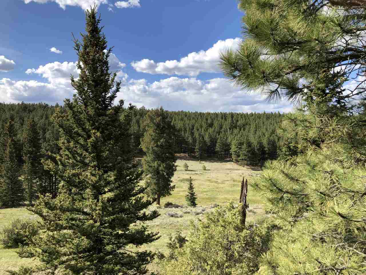 Lot 1331 Brazos, Angel Fire, NM 87710