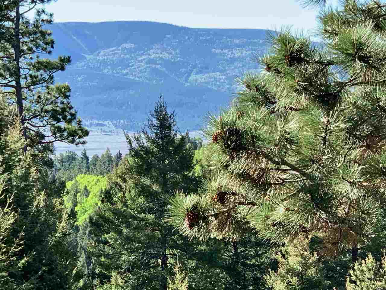 Lot 96AB Palo Flechado Ridge Road, Angel Fire, NM 87710