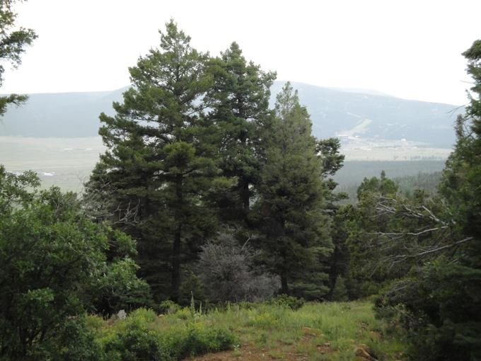 Lot 30 Palo Flechado Ridge Road, Angel Fire, NM 87710