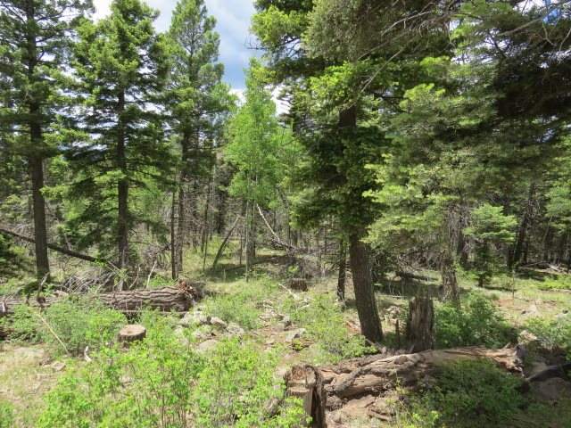 Lot 1156 Panorama Way, Angel Fire, NM 87710